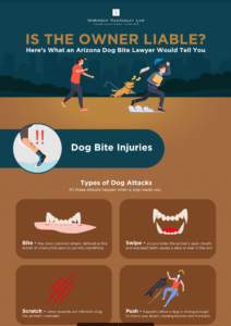 Infographic: Is The Dog Owner Liable?